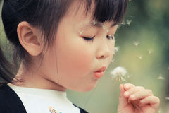 Free Girl With Dandelion Royalty Free Stock Image - 20365926