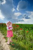 Girl With Poppies Stock Image
