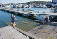 Girl and woman walk dogs along the pier. NYNASHAMN, SWEDEN - JULY 18, 2018: Girl and woman walk dogs along the pier on July 18, 2018 in Nynashamn, Sweden royalty free stock images