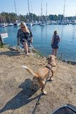 Girl and woman walk dogs along the pier. NYNASHAMN, SWEDEN - JULY 18, 2018: Girl and woman walk dogs along the pier on July 18, 2018 in Nynashamn, Sweden stock photography