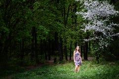 Girl in wonder wood Stock Image