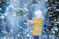 The girl in the wood shakes in the winter a fir-tree Stock Image