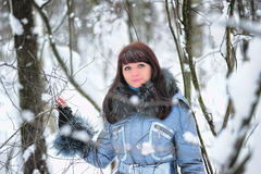 Girl in woodland snow scene Royalty Free Stock Images