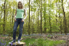 Girl in woods Royalty Free Stock Photography