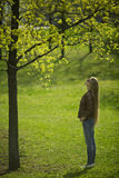 The girl in the woods. Beautiful woman in the woods Stock Photos