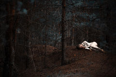 The girl in the woods. Beautiful woman lies in the woods Stock Image