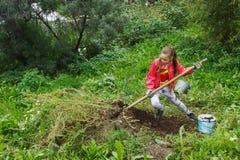 Girl working in garden. Girl teenager in red jacket digging in green garden Royalty Free Stock Photos