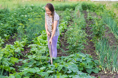 Girl working on a garden Royalty Free Stock Images