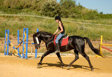 Girl and working horse Stock Photo