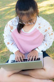 Girl working with laptop on grass Royalty Free Stock Photos