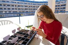 Girl working on seedling task outdoor. Table royalty free stock photo