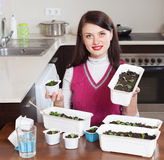 Girl working with  seedlings Stock Image