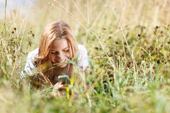 Girl is writing sms on the phone lying in grass Stock Image