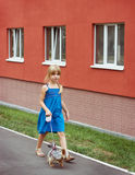 Girl 6 years old walking with a Yorkshire terrier near high-rise building Royalty Free Stock Photo
