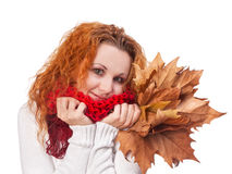 Girl with yellow autumn leaves Stock Image