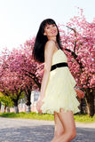 Girl in a yellow dress running down the avenue Stock Photography