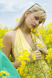 Girl in yellow field Royalty Free Stock Photo