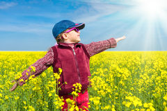 Girl in yellow field of rape Royalty Free Stock Photography