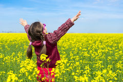 Girl in yellow field of rape Stock Photography
