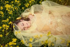 The girl in flower field royalty free stock images