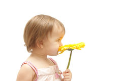 The girl with yellow gerbera Royalty Free Stock Photos