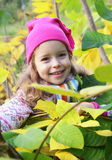 Girl in the yellow-green foliage Royalty Free Stock Images
