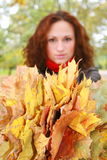 Girl and yellow leaves. The girl with dry leaves from trees royalty free stock images