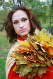 Girl and yellow leaves. The girl with dry leaves from trees stock photo