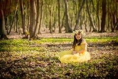 Girl in yellow princess dress Stock Photos