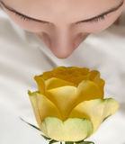 Girl and yellow rose Stock Photos