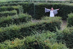 Girl in a yew maze Royalty Free Stock Photos