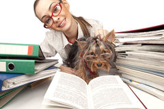 Girl with Yorkshire Terrier at the table Stock Photography