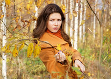 The girl among young birches Royalty Free Stock Photo