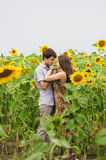 Girl and a young man in the field of sunflowers Stock Image