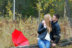 Girl and a young man kissing in the wood Royalty Free Stock Photography