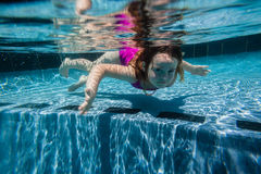 Girl Young Pool Underwater Stock Images