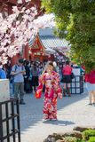 A girl in a yukata suit is taking a photo of a smartphone at the Asakusa Temple in Tokyo, Japan. TOKYO, JAPAN - April 30, 2017: A girl in a yukata suit is Stock Photography