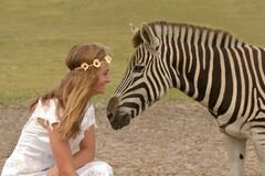 Girl and zebra close together