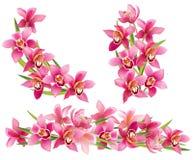 Girland av orkidér stock illustrationer