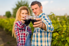 The girland guy in the vineyard Stock Photography