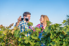 The girland guy in the vineyard. The girl and the guy in the vineyard drink red wine Royalty Free Stock Photography
