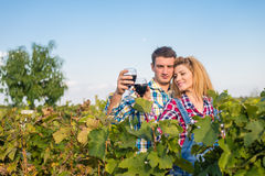 The girland guy in the vineyard. The girl and the guy in the vineyard drink red wine Royalty Free Stock Image