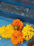 Girlande Blumen Stockfotos