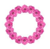 Girlande der rosafarbenen Blumen Stockbild