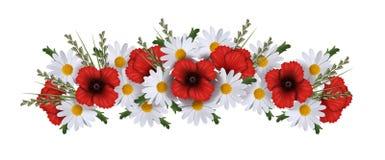 Girlande von den Mohnblumen, von Gänseblümchen und von Gras lokalisiert auf Weiß lizenzfreie abbildung