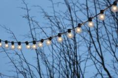 Girlande von Retro- Glühlampen stockfotografie