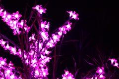 Girlander är upplysta på natten i form av buskar eller blommor Arkivbilder