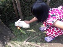 Girld con coniglio Fotografie Stock