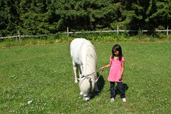 Girld with a white horse. Royalty Free Stock Image