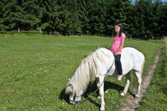 Girld with a white horse. Stock Photo